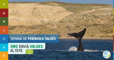 Península Valdés: finalista de la campaña 7 Maravillas Naturales Argentinas