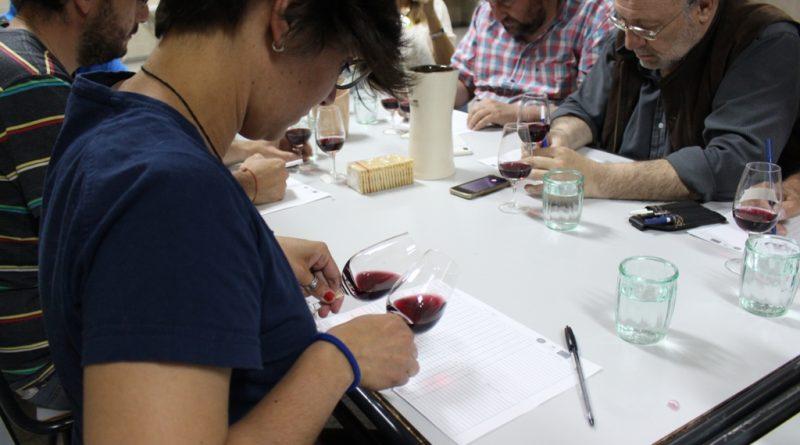 ISET N°815: Estudiantes realizaron cata de vinos de la región