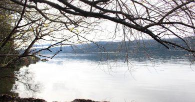 Se realizará feria de productores y artesanos en el Parque Nacional Los Alerces