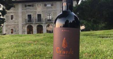 Vinos de Chubut reconocidos con medallas de plata en los premios USA Wine Ratings