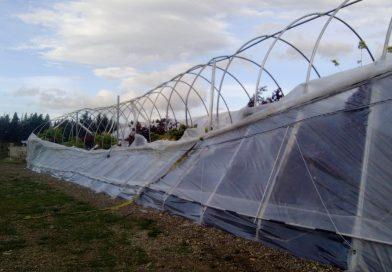 Productores de Trevelin afectados por el temporal